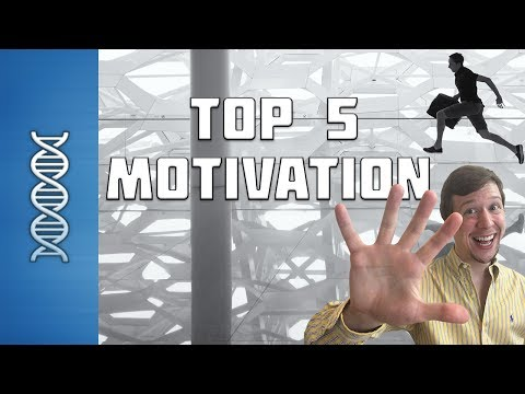 The TOP 5 Nootropics for Increasing Motivation