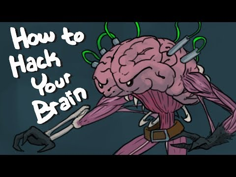 How To Hack Your Brain – Top 6 Nootropics