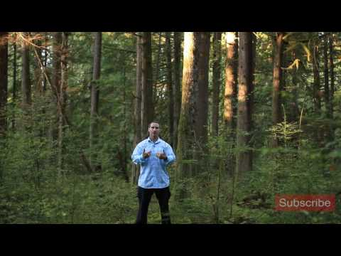 Nature, the Spirituality Cheat Sheet
