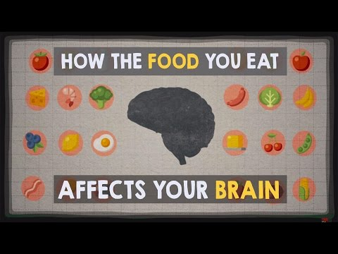 How the food you eat affects your brain – Mia Nacamulli