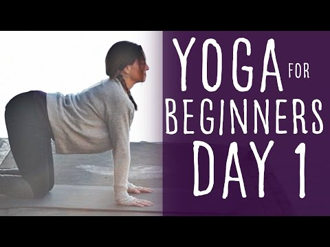 15 Minute Yoga For Beginners 30 Day Challenge Day 1 With Fightmaster Yoga