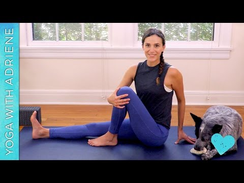 Yoga For Beginners – The Basics – Yoga With Adriene