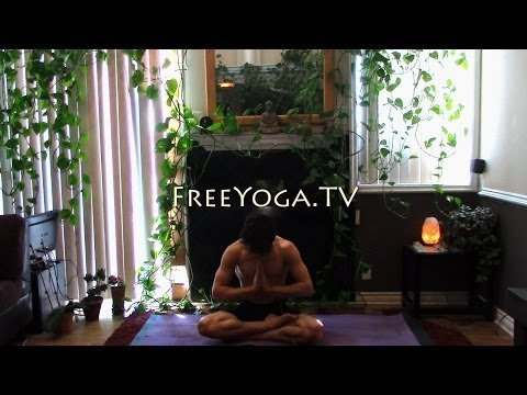 60 Minute Hatha Yoga Class for flexibility, by Stephen founder of FreeYoga.TV