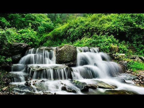 Meditation Music, Studying Music for Concentration, Music for Stress Relief, Brain Power, ☯3419