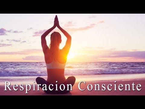 Meditación Guiada ◈ Atención a la Respiración ◈ 20 Minutos MINDFULNESS Consciencia Plena