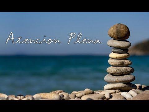 MINDFULNESS Meditación Guiada para Principiantes ⚘ Clase Teórica Completa ॐ Atención Plena