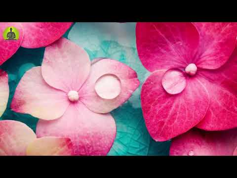 """Pure Healing Music To Soothe Your Mind"" Stress Relief Meditation Music, Relaxing Sleep Music"