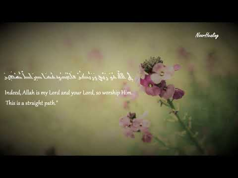 A Relaxing Recitation of Surah Ad-Dukhan for deep sleep Stress Relief and finding your inner peace.
