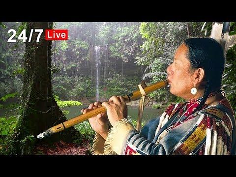 Native American Flute Music and Rain LIVE – Relaxing, Sleep, Meditation, Healing, Study